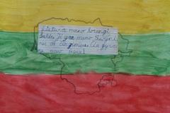 Dovydo-Siriuno-Vilkaviskio-Azuolo-progimnazija-2a-kl.